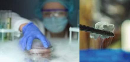 Cómo congelar las células sin agentes crioprotectores (CPA) para evitar citotoxicidad