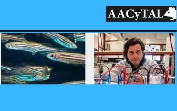 XXVII Jornada de Actualización AACyTAL