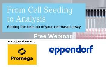 Free Webinar: From Cell Seding to Analysis