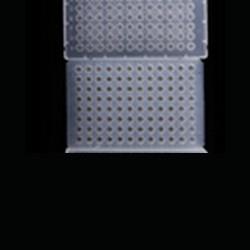 Placa para PCR 96 wells sin faldón - 25 unidades