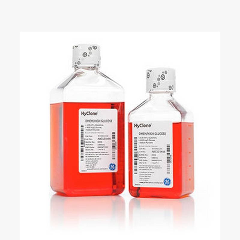 DMEM with High Glucose, with 4.0 mM L-Glutamine, without Sodium Pyruvate Classical Liquid Media 500 mL