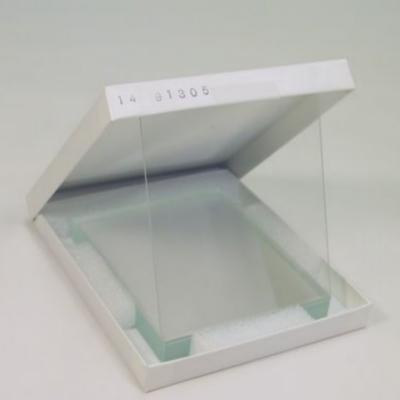 Placa de Vidrio Cytiva. Dimensiones 10 x 8 cm - 10 unidades (SE202P-10)