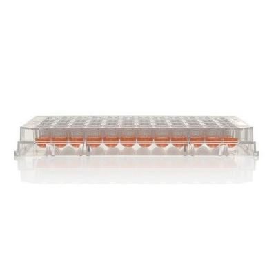 Multiplaca Nunc, 96 pocillos, sin tratamiento, no estéril, sin tapa, transparente, U96, capacidad pocillo 300 ul - 10 unidades