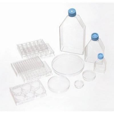 Placa para Cultivo Celular Biolite, estéril - 10 unidades